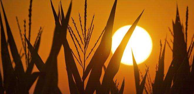 В Украине запустилась вторая по мощности солнечная станция