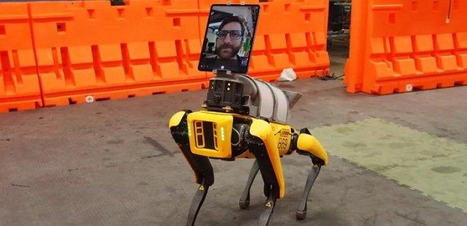 Четвероногий робот от Boston Dynamics помогает врачам уберечься от коронавируса