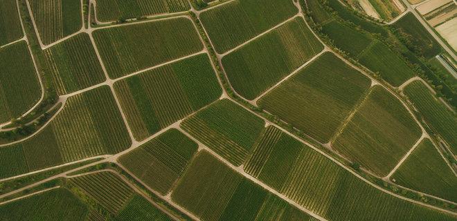 В Украине запущена вторая онлайн-платформа по продаже сельхоз земель  - Фото